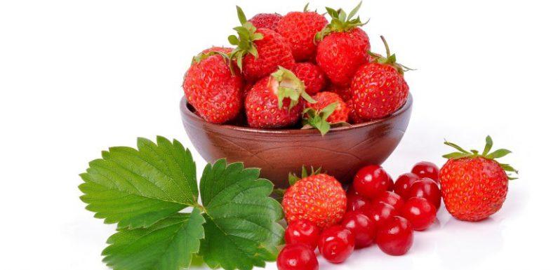 Dieta 24 godzinna owocowa