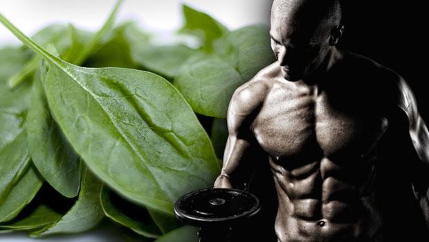 Jak przygotować dobrą dietę dla kulturysty?