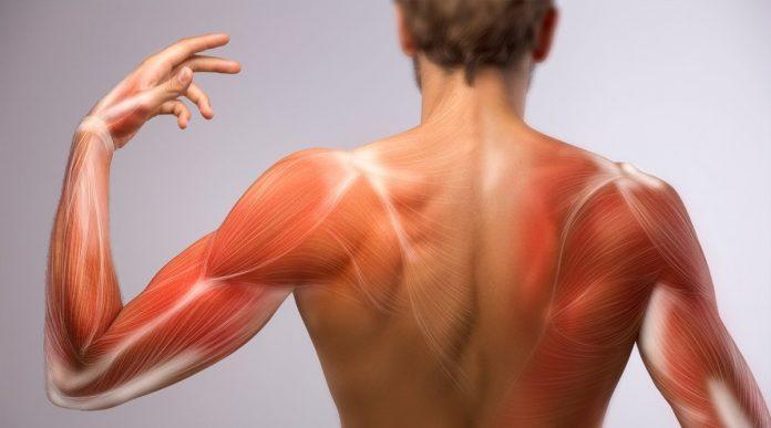 zakwasy co robić mięśnie