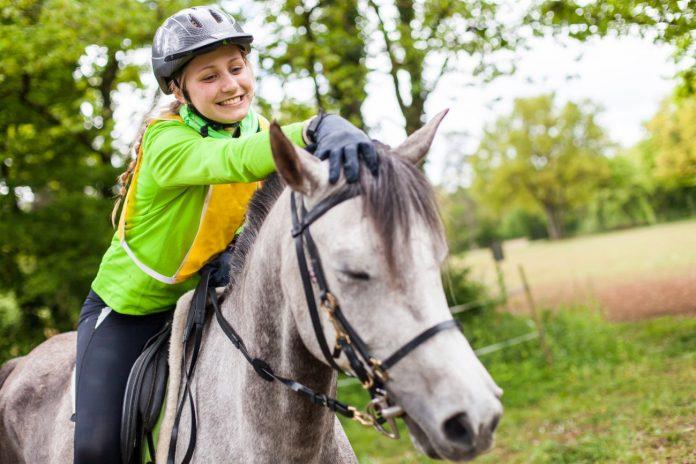 koń terpia kręgosłupa